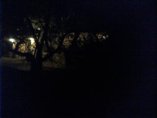 Piccola oasi Macchia