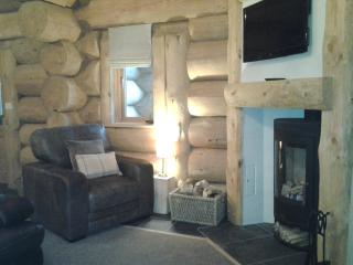 open plan living area with log burner