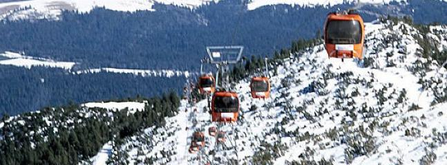 Gondola Ride to the Summit