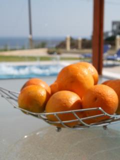 The Terrace enjoys Stunning Pool & Sea Views