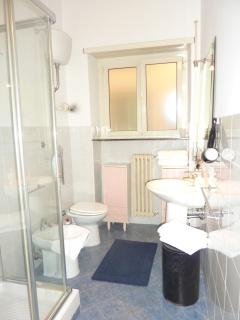 Spotless Clean New Bathroom with Shower and Washing Machine, Hair-Dryer, Towels, Soap, Toilet Paper