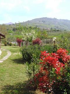 Another view of the garden and the hills in the background