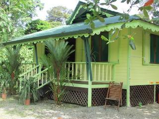 The Amarilla House