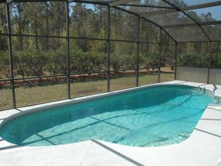 South Facing Luxury Villa Rental in Kissimmee