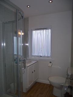 Ensuite shower room off master bedroom