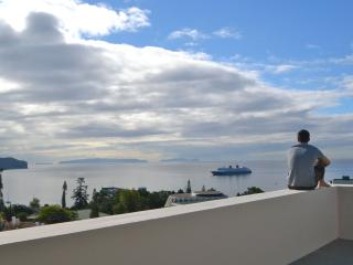 3 bedroom Penthouse in Funchal
