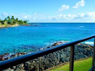 Free Car* Kuhio Shores 208 - Beautiful 1bd oceanfront with stunning ocean views. Next door to Lawai Beach., Poipu
