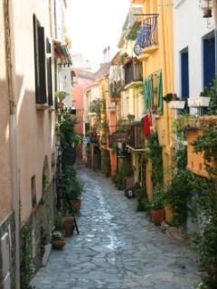 Typical Collioure side street