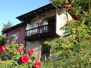 Casa Llenin, renovated characteristic finca in Picos de Europa, Asturias
