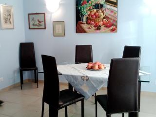 SPACIOUS APARTMENT- GARAGE/VILLA ADA VIA SALARIA