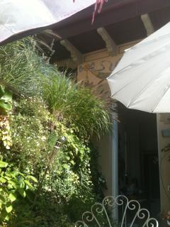 terrace with a vertical garden
