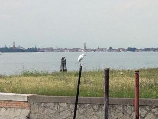 Vivi la magia del Lido di Venezia!, City of Venice