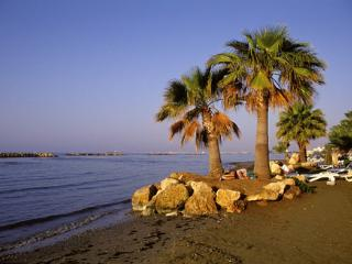Larnaca Old Town Centre / Bay / Near Beach