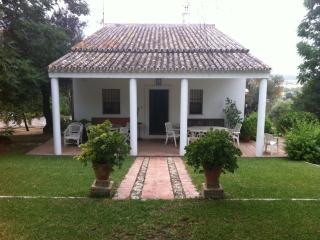 Superb villa with pool 25 KM from Seville
