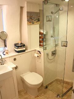 Nelson's bathroom