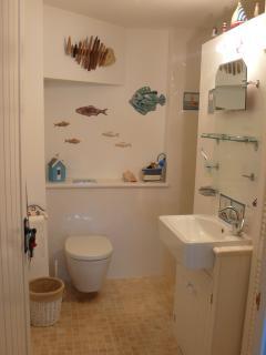 Flag room bathroom