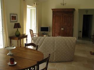 La grande pièce à vivre : le salon qui donne sur une terrasse plein sud