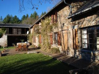 Les Saules Farmhouse with Hot-tub and Heated Pool, Lannemezan