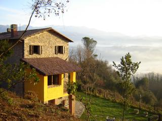 Albatrello, Gallicano