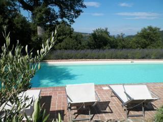 Stunning Views, very Large Saline Heated Pool, Città di Castello