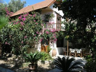 Olive tree Cottages Paleochora