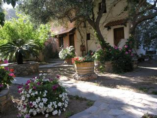 Olive tree Cottages Paleochora