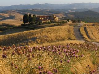 Podere Pianuggiole, Volterra