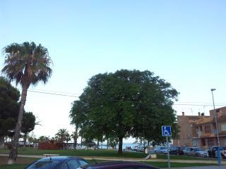 Apartament in front of the sea, Los Alcazares