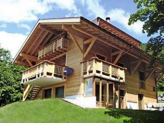 Ollon 31953, Villars-sur-Ollon