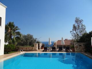 The Villa Olive pool area