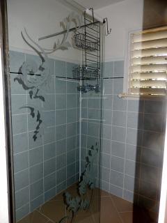 un WC indépendant près de l'entrée et une salle d'eau avec une douche antillaise