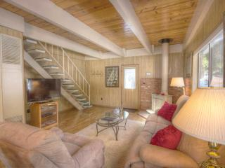 Great Tahoe Cabin in Charming Forest Setting ~ RA805