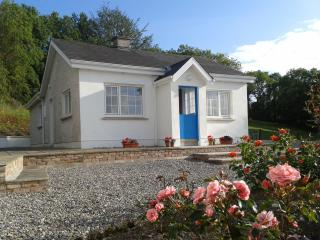 Cosy Cottage near Blackwater River
