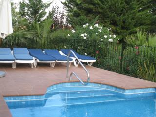 Swimming pool showing steps and hand rail