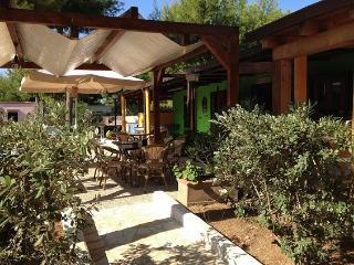 Ristorante esterno del Centro Villa Carla, immerso nel verde, allieterà le vostre cene