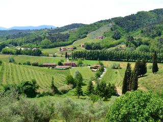 Staffed Tuscan farmhouse with shared outdoor pool, games room and amazing views, sleeps seven, Lucca