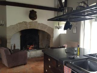 The double height fully equipped kitchen with fireplace
