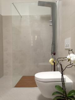 Bathroom with jaccuzi shower
