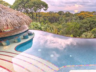 Villa Tucan Tango - Luxury-  Infinity Pool - Spect, Dominical