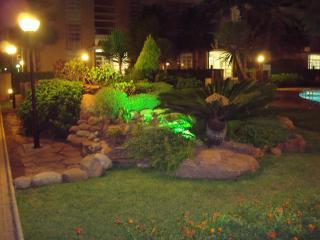 Garden & pool by night