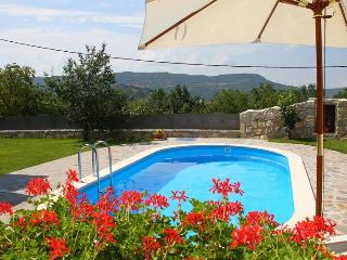 Villa for 10+4 person and JACUZZI--panoramic view, Buzet