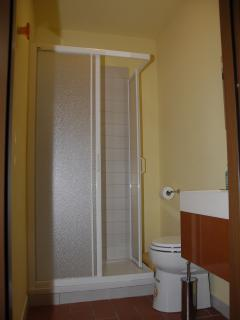 inside of shower-room with wc in bedroom.