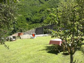 Il giardino / The garden