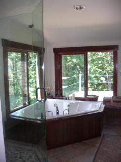 Master Bathroom  2 person Jacuzzi