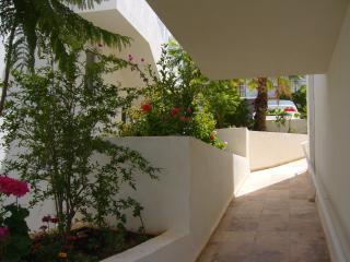 Villa Kisla Han Garden side path