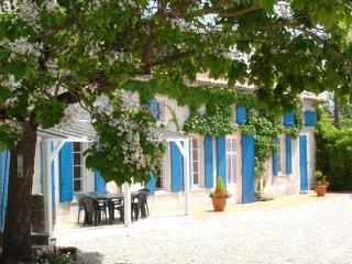 La Vigne - Les Vieilles Ombres -Gite 25 minutes from Cognac