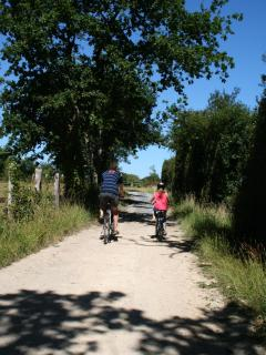 Bike rides through the Normandy 'bocage'