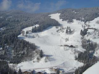 Maclean Alpendorf 43