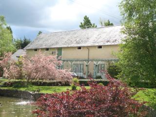 La Cistude, Loches