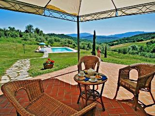 Picturesque Tuscan villa in the hills near Siena features private garden, barbecue and swimming pool, Radicondoli